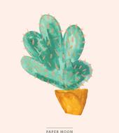 col2_cactus-a3_marie-willumsen